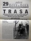 """Trasa"", Galerie Bayer and Bayer, no. 29, vol. VI, 2002 (2002)"